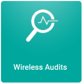 Wireless Audits